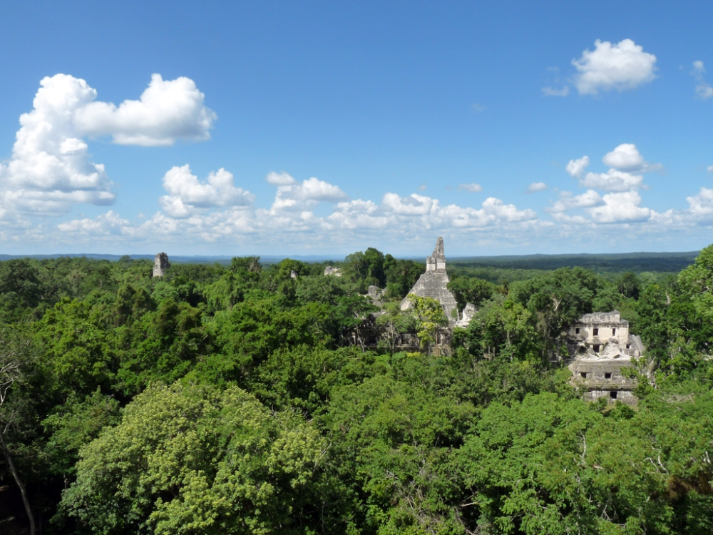 Another amazing view at Tikal.
